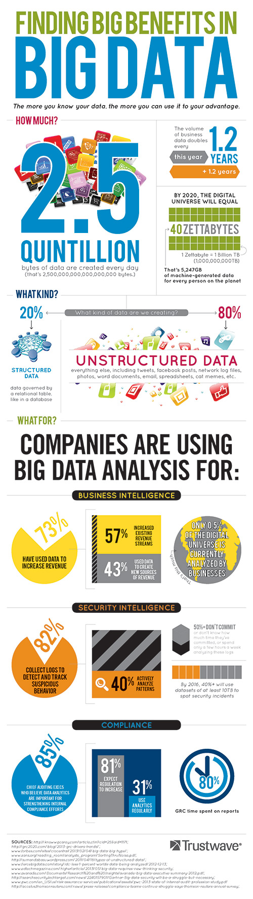 Trustwave Big Data - Infographic